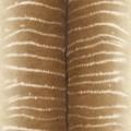 Papel Tapiz African Queen II 473520