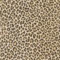 Papel Tapiz African Queen II 473612